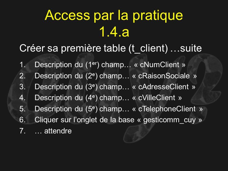 Access par la pratique 1.4.a