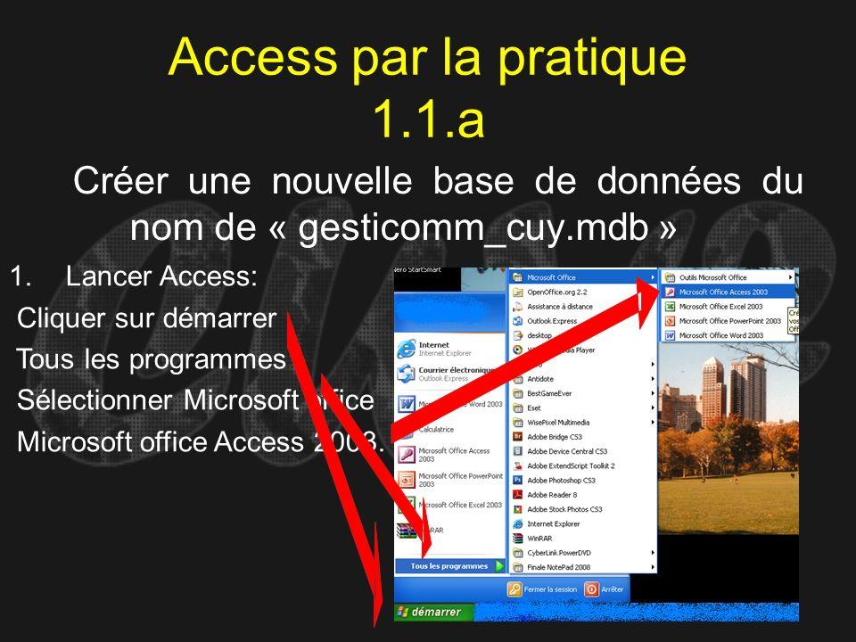 Access par la pratique 1.1.a