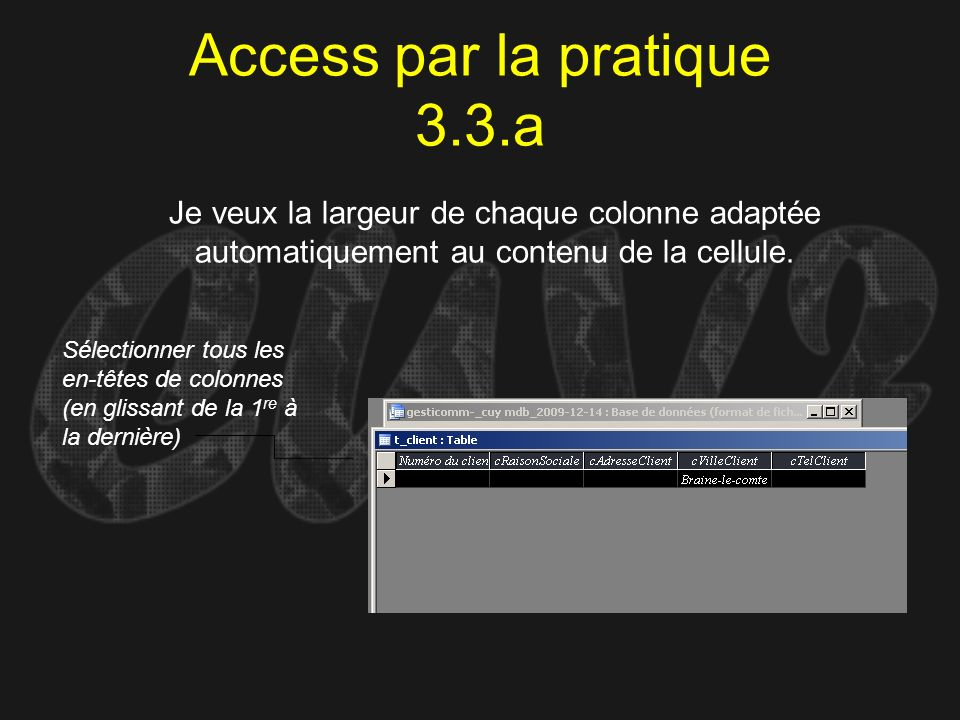 Access par la pratique 3.3.a