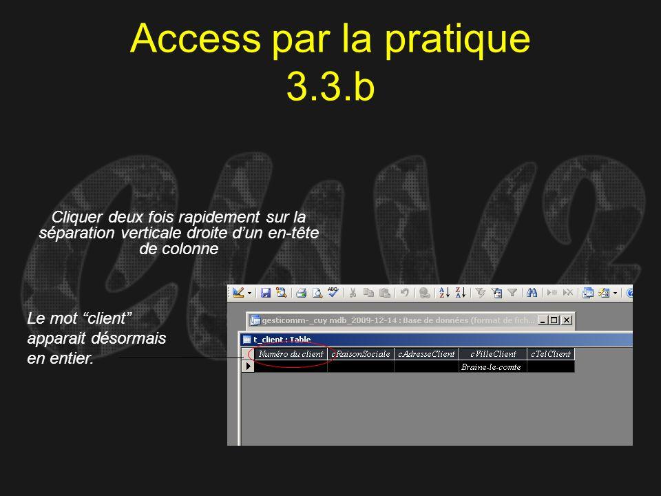 Access par la pratique 3.3.b
