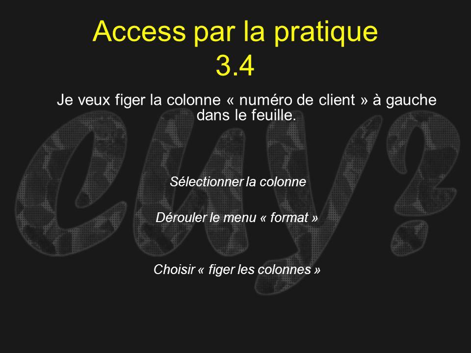 Access par la pratique 3.4Je veux figer la colonne « numéro de client » à gauche dans le feuille. Sélectionner la colonne.