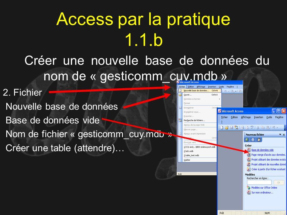 Access par la pratique 1.1.b