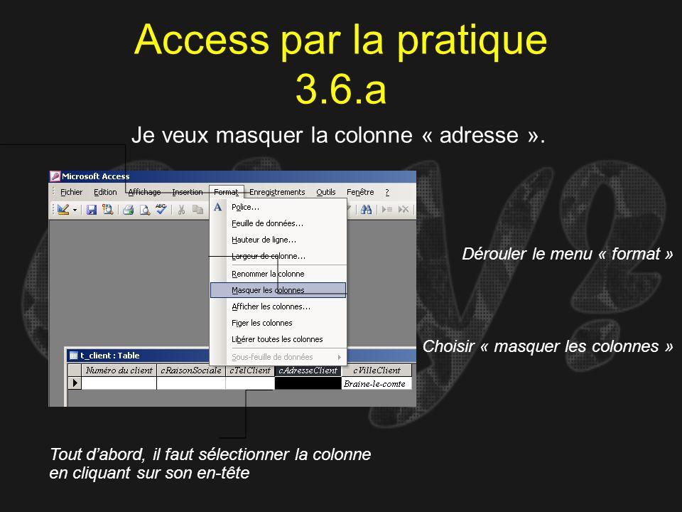 Access par la pratique 3.6.a