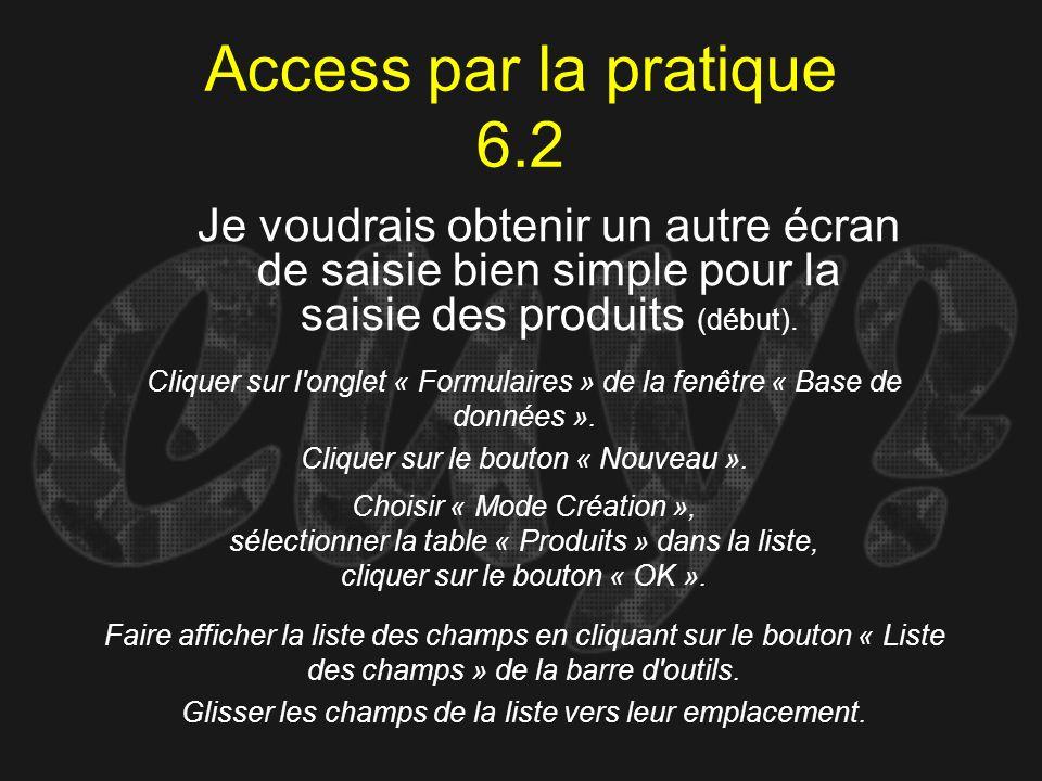 Access par la pratique 6.2 Je voudrais obtenir un autre écran de saisie bien simple pour la saisie des produits (début).