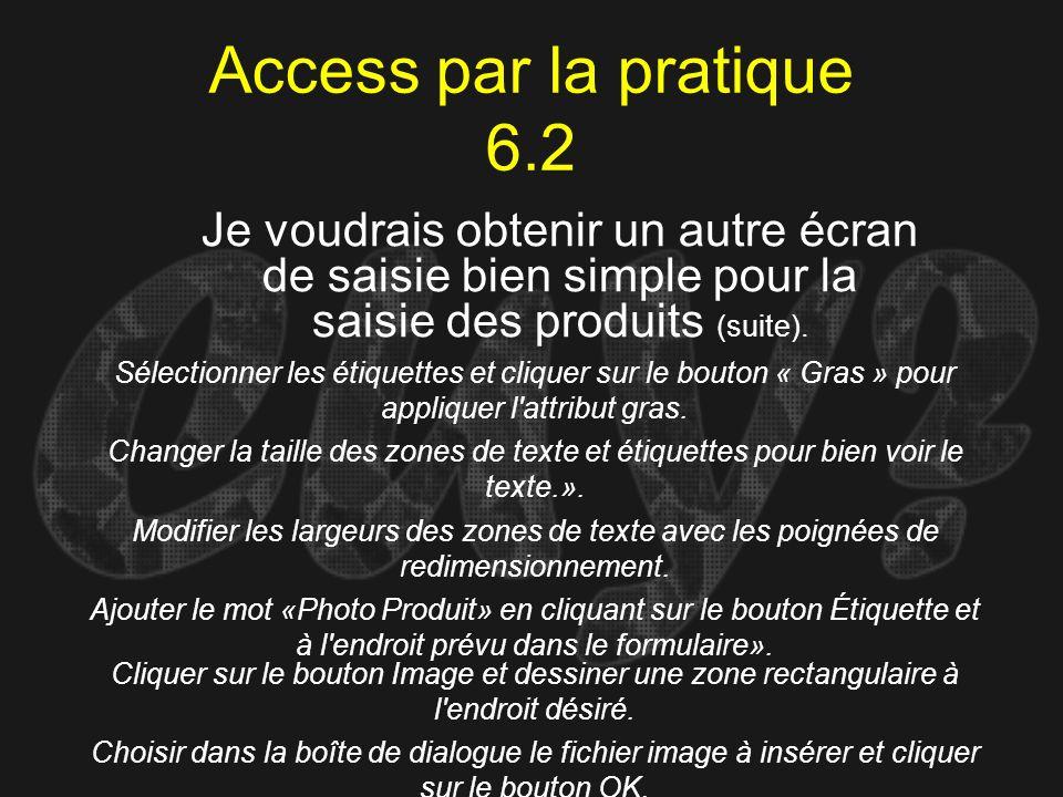 Access par la pratique 6.2 Je voudrais obtenir un autre écran de saisie bien simple pour la saisie des produits (suite).