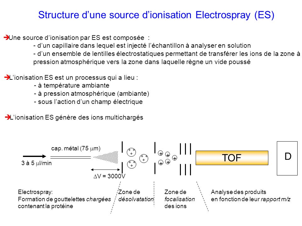 Structure d'une source d'ionisation Electrospray (ES)