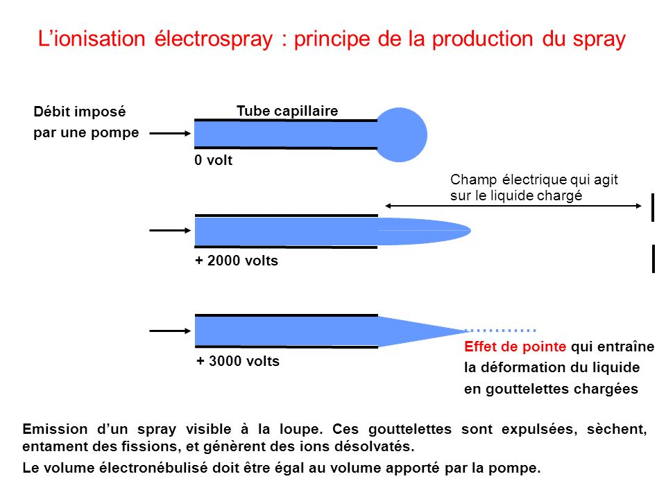 L'ionisation électrospray : principe de la production du spray