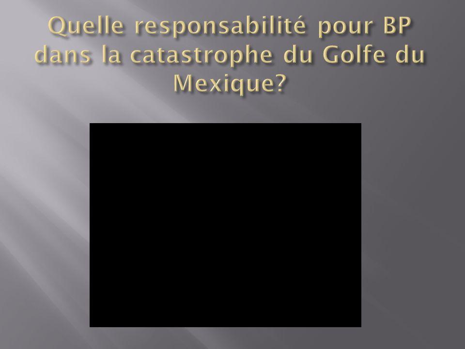 Quelle responsabilité pour BP dans la catastrophe du Golfe du Mexique
