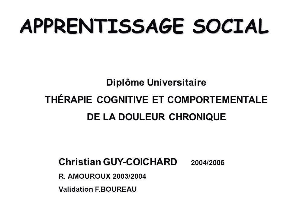 APPRENTISSAGE SOCIAL Diplôme Universitaire