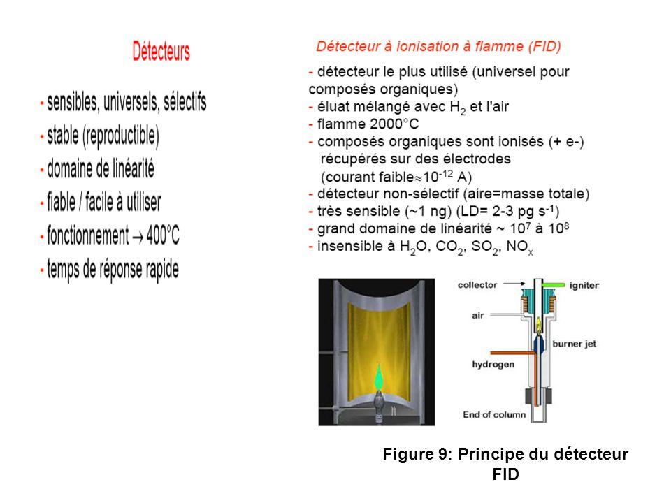 Figure 9: Principe du détecteur FID