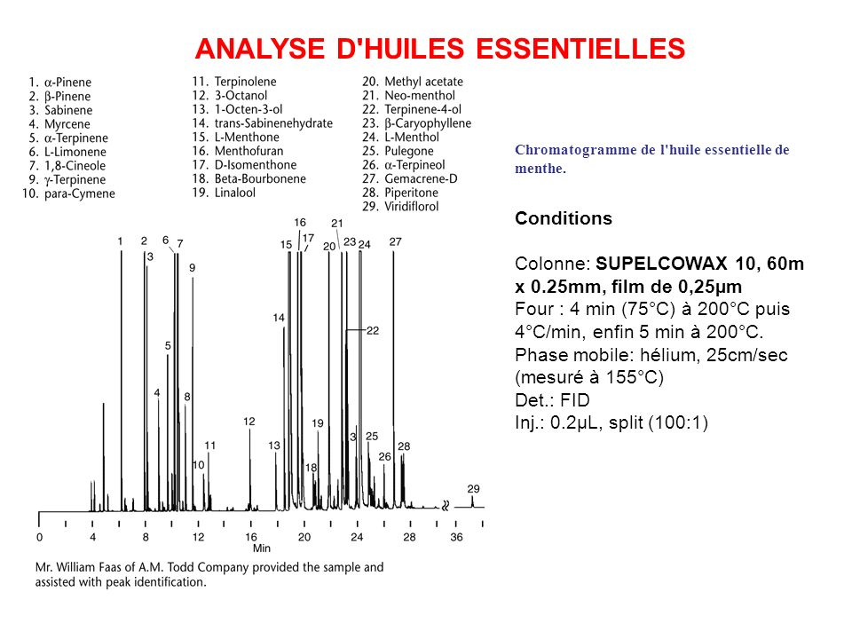 ANALYSE D HUILES ESSENTIELLES