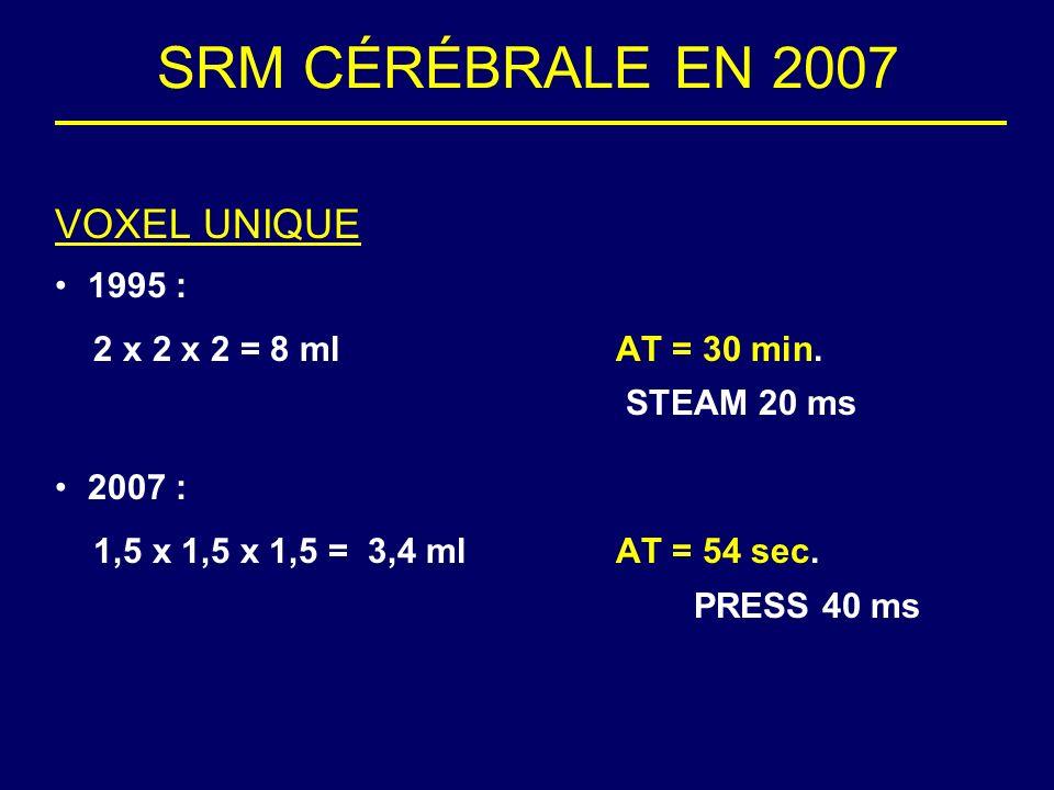 SRM CÉRÉBRALE EN 2007 VOXEL UNIQUE 1995 :