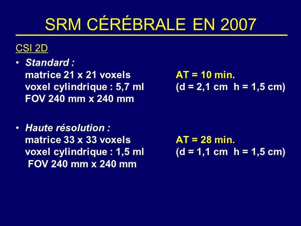 SRM CÉRÉBRALE EN 2007 CSI 2D.