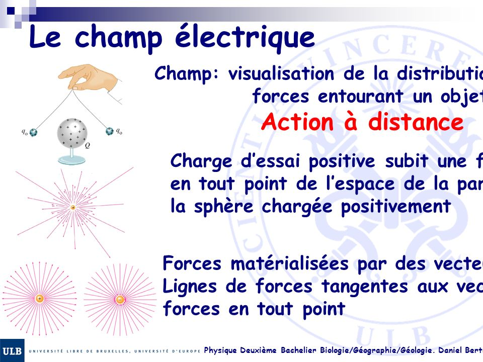 Le champ électrique Champ: visualisation de la distribution des forces entourant un objet.