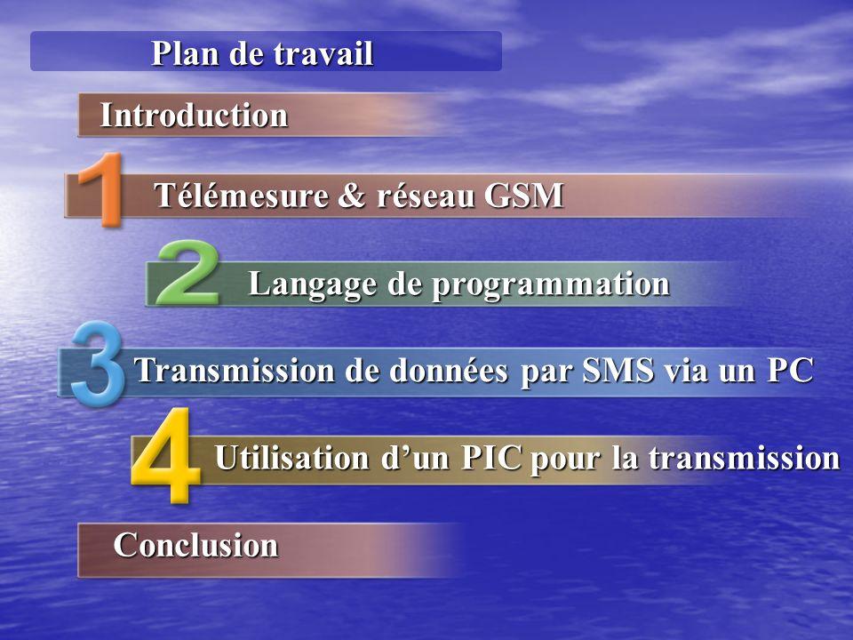 Plan de travail Introduction. Télémesure & réseau GSM. Langage de programmation. Transmission de données par SMS via un PC.