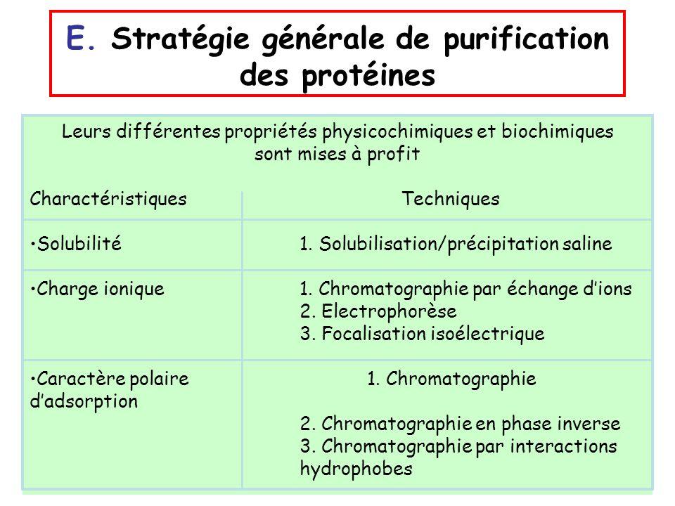 E. Stratégie générale de purification des protéines
