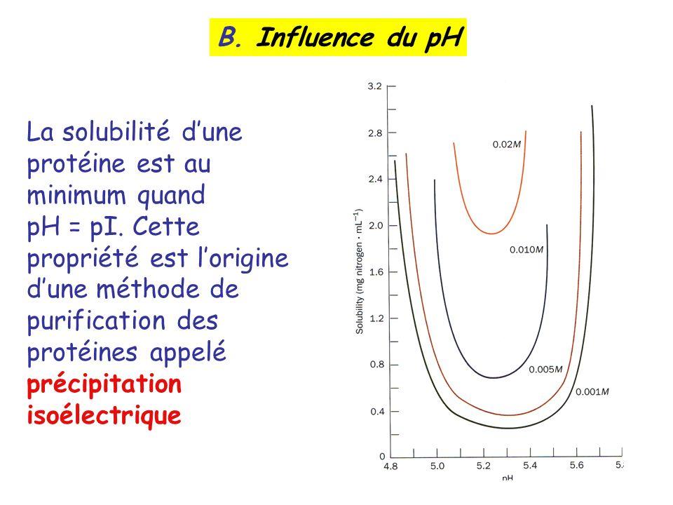 B. Influence du pH La solubilité d'une protéine est au minimum quand.