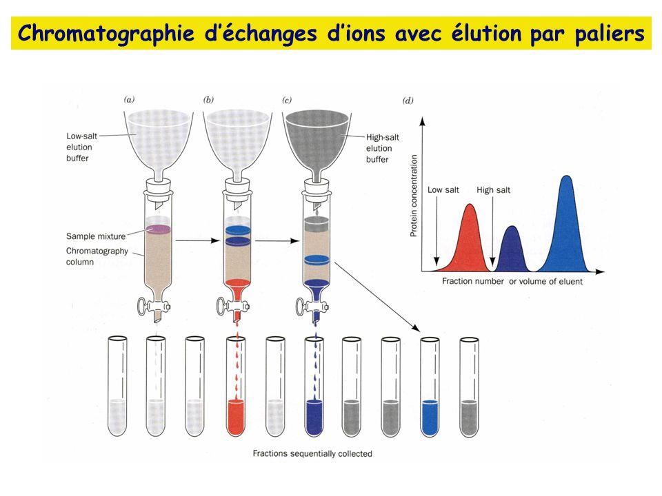 Chromatographie d'échanges d'ions avec élution par paliers