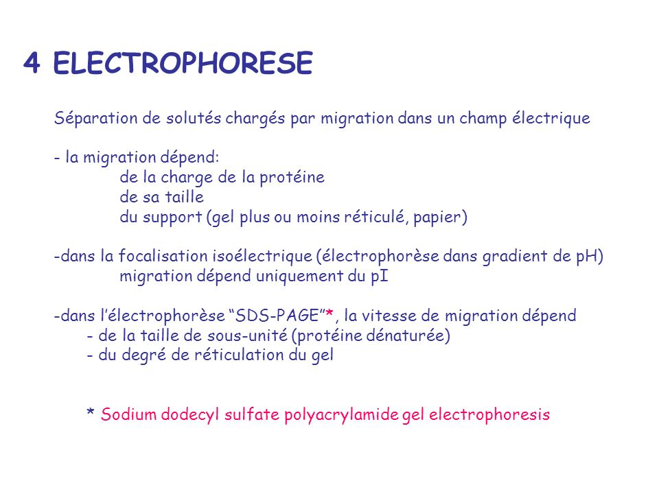 4 ELECTROPHORESE Séparation de solutés chargés par migration dans un champ électrique. - la migration dépend: