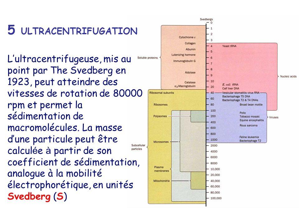 5 ULTRACENTRIFUGATION