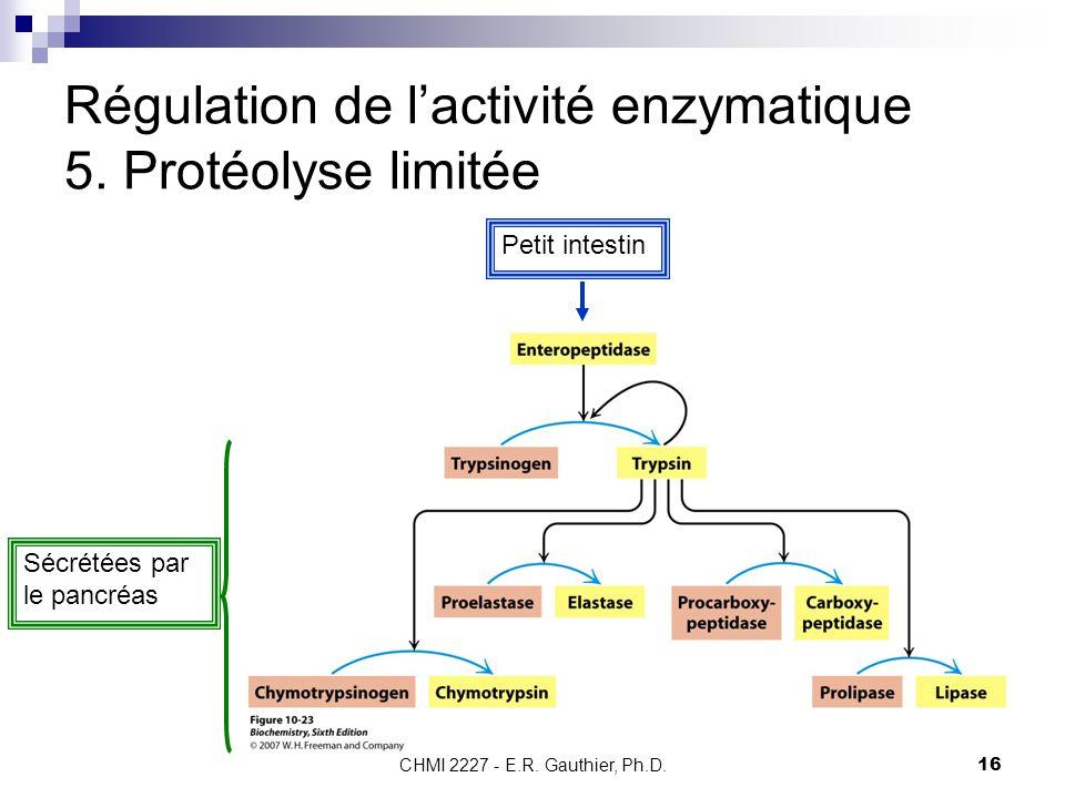 Régulation de l'activité enzymatique 5. Protéolyse limitée