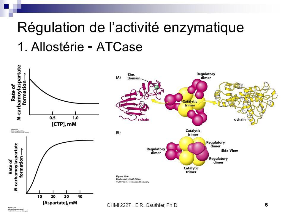 Régulation de l'activité enzymatique 1. Allostérie - ATCase