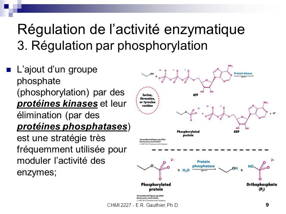 Régulation de l'activité enzymatique 3. Régulation par phosphorylation