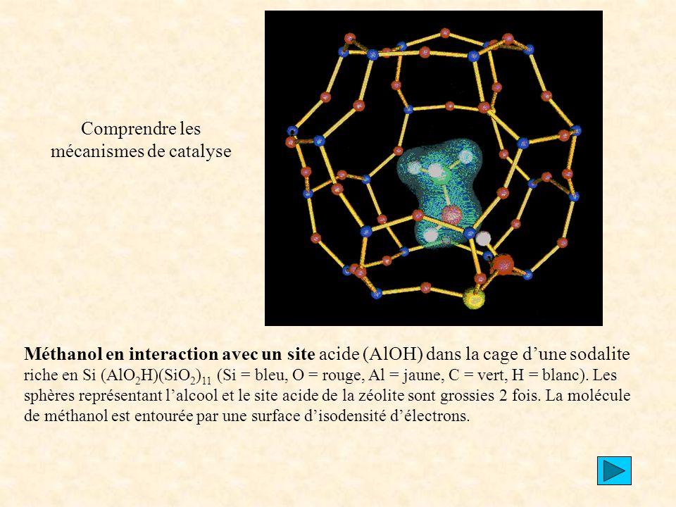Comprendre les mécanismes de catalyse