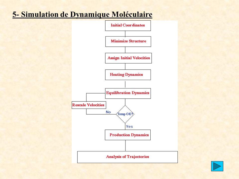5- Simulation de Dynamique Moléculaire