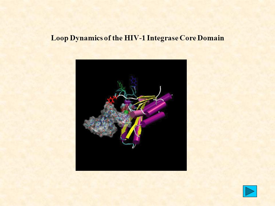 Loop Dynamics of the HIV-1 Integrase Core Domain