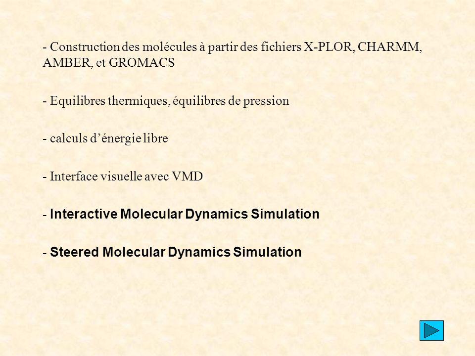 - Construction des molécules à partir des fichiers X-PLOR, CHARMM, AMBER, et GROMACS