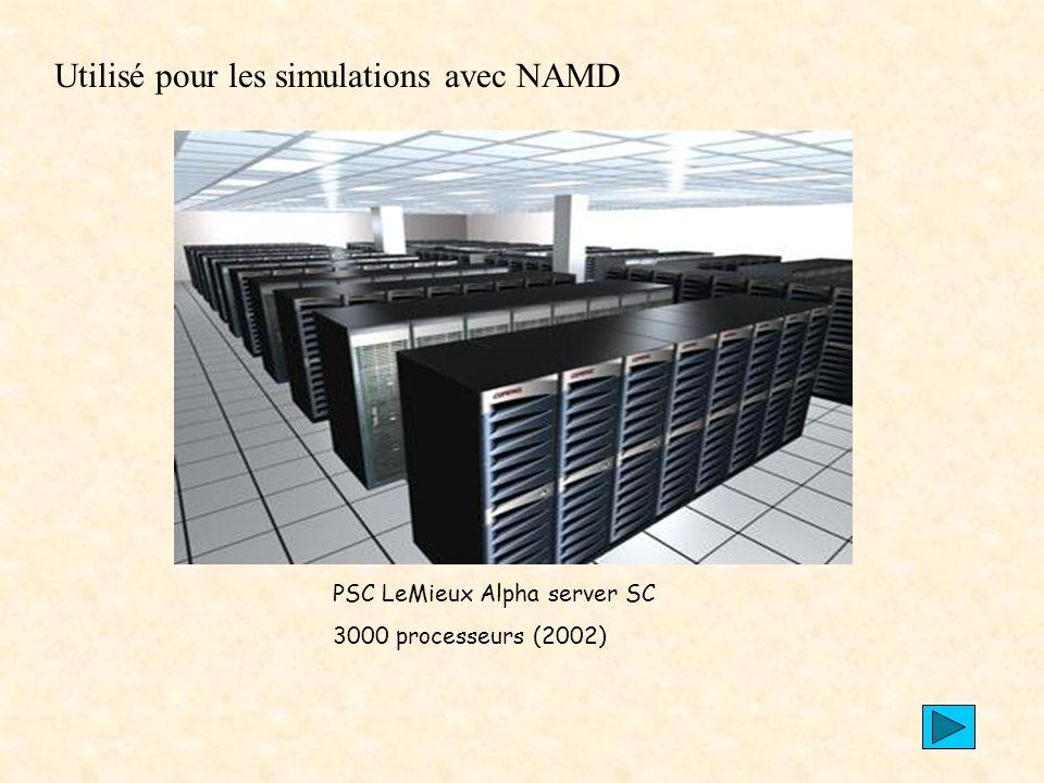 Utilisé pour les simulations avec NAMD