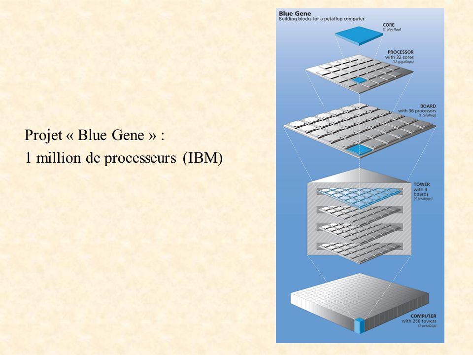 Projet « Blue Gene » : 1 million de processeurs (IBM)