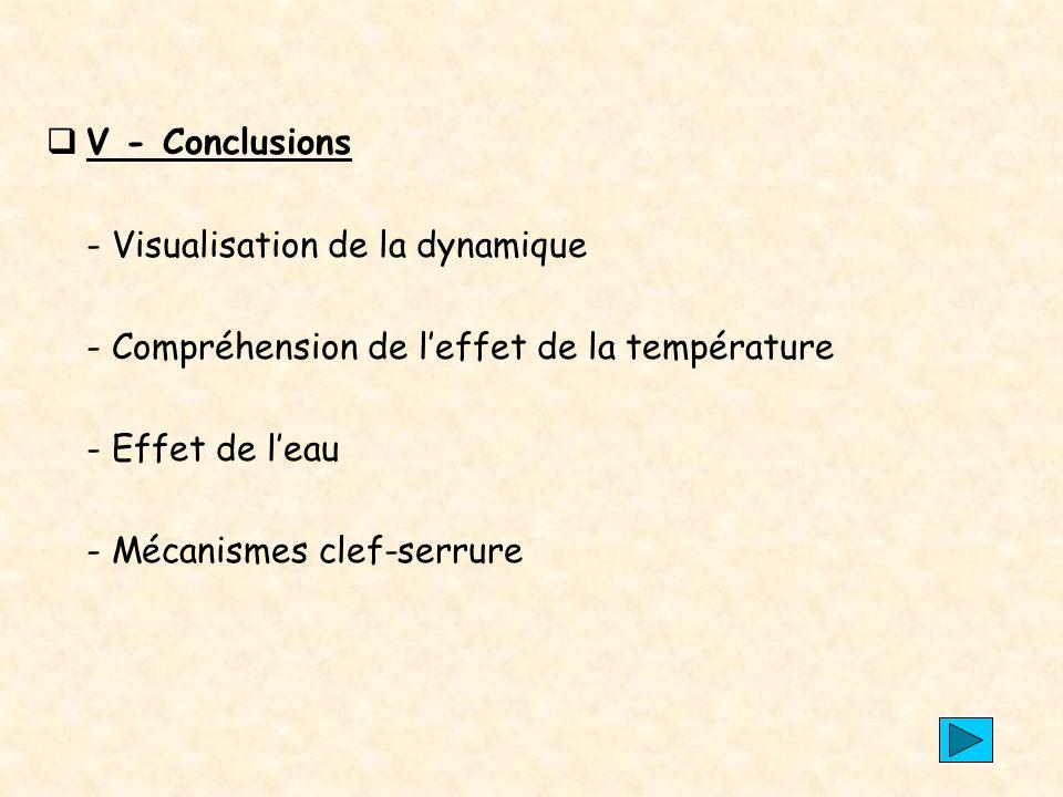 V - Conclusions - Visualisation de la dynamique. - Compréhension de l'effet de la température. - Effet de l'eau.