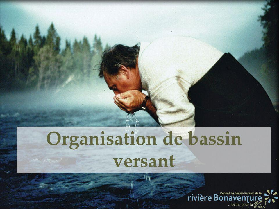 Organisation de bassin versant
