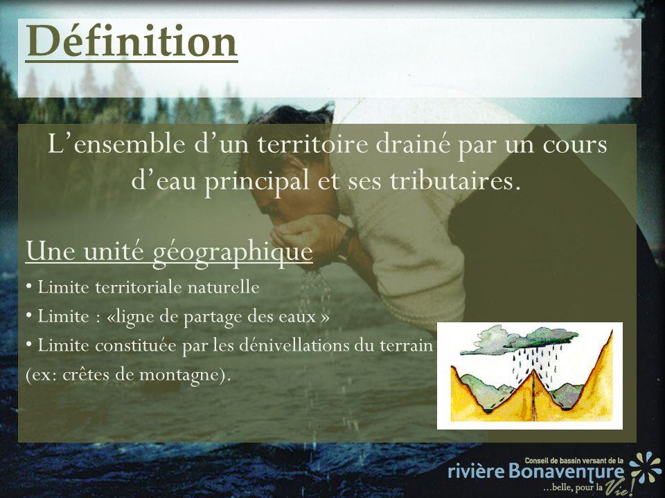 Définition L'ensemble d'un territoire drainé par un cours d'eau principal et ses tributaires. Une unité géographique.