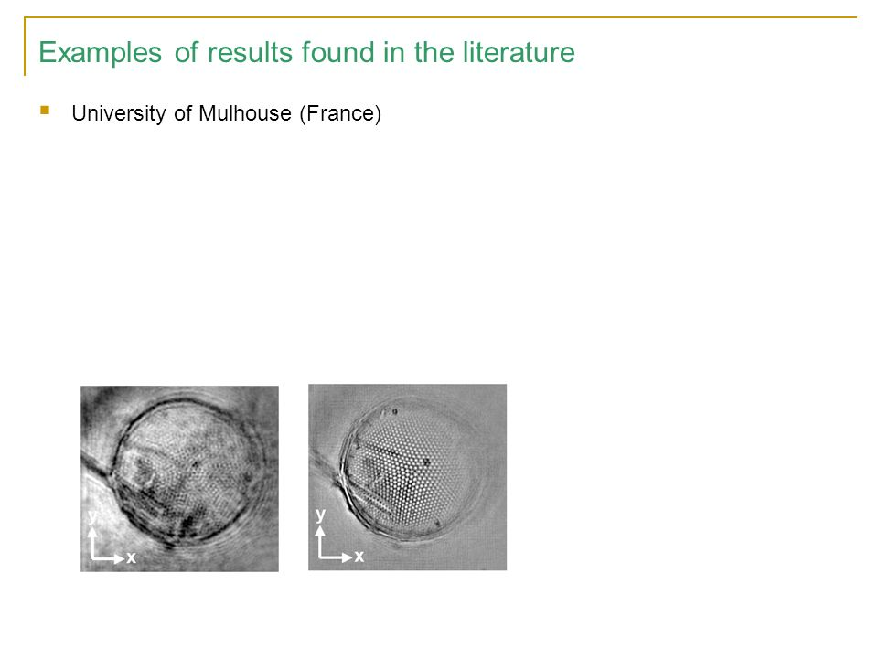 Examples of results found in the literature