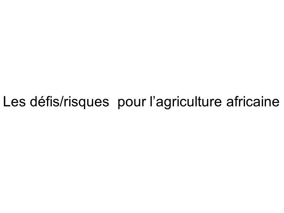 Les défis/risques pour l'agriculture africaine
