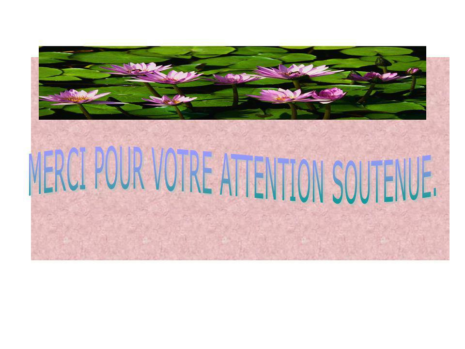 MERCI POUR VOTRE ATTENTION SOUTENUE.
