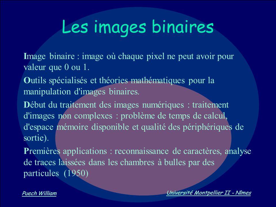 Les images binaires Image binaire : image où chaque pixel ne peut avoir pour valeur que 0 ou 1.