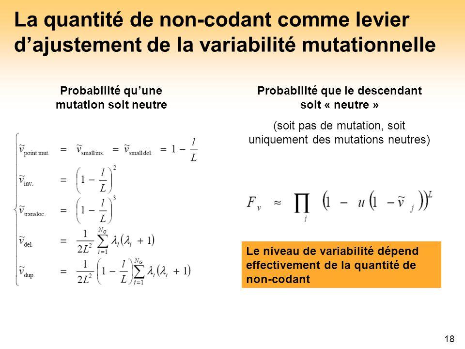 La quantité de non-codant comme levier d'ajustement de la variabilité mutationnelle