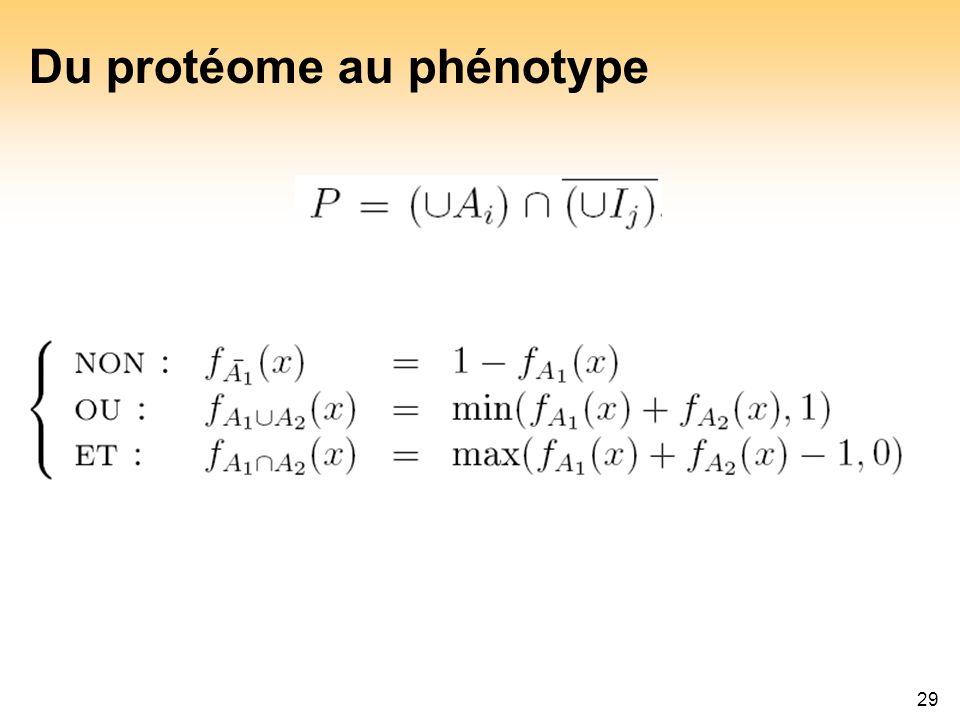Du protéome au phénotype