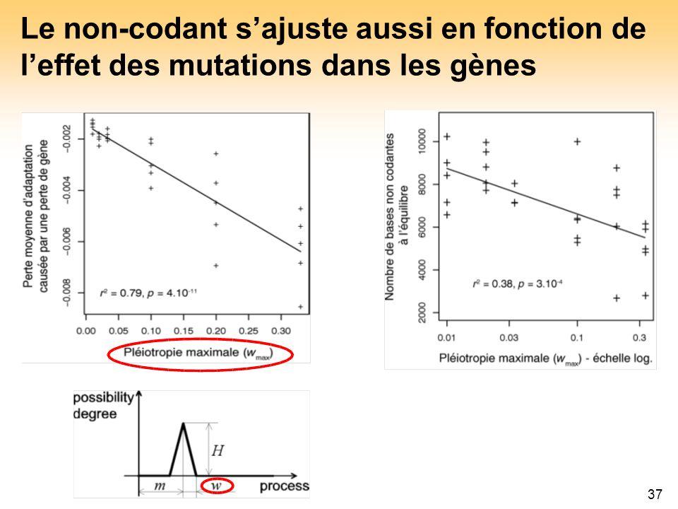 Le non-codant s'ajuste aussi en fonction de l'effet des mutations dans les gènes