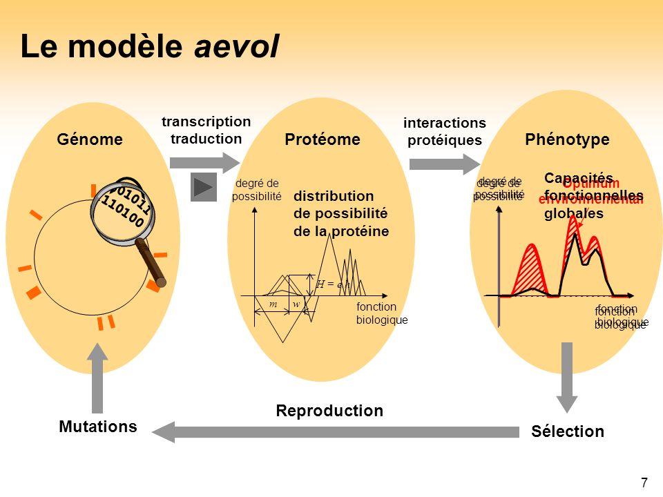 Le modèle aevol Génome Protéome Phénotype 001011 110100 Reproduction