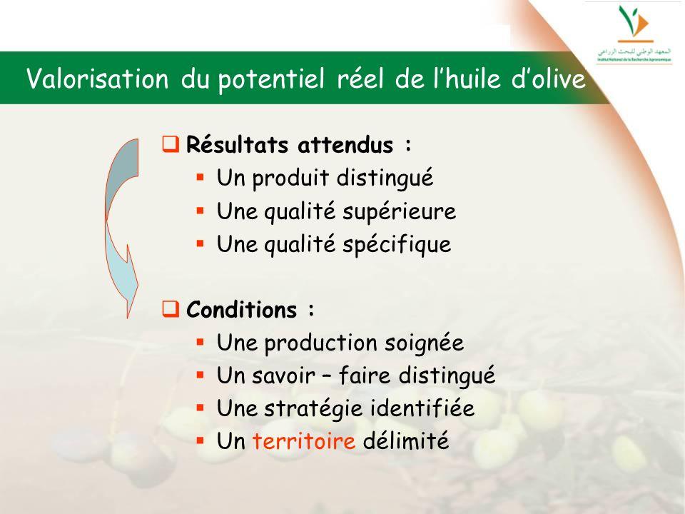 Valorisation du potentiel réel de l'huile d'olive