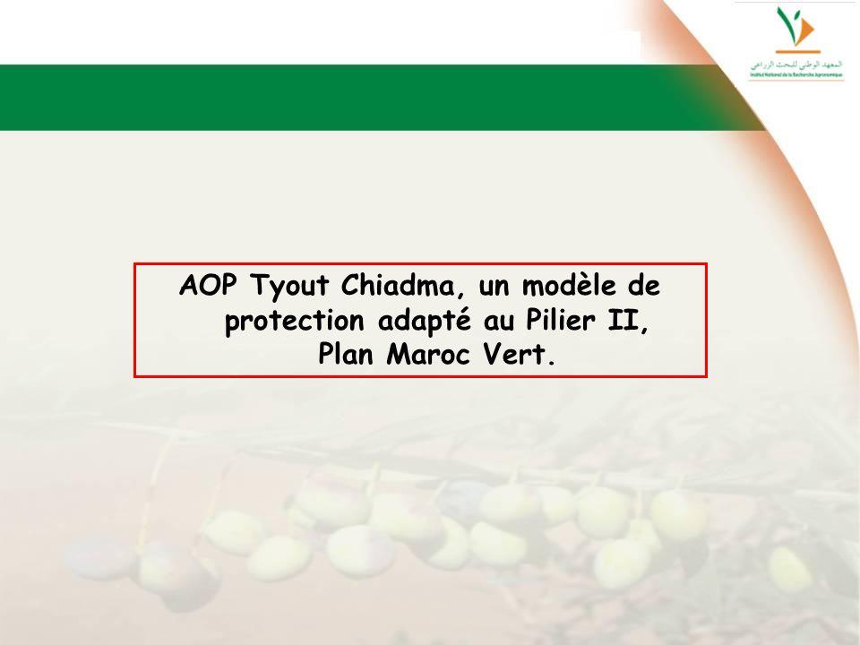 AOP Tyout Chiadma, un modèle de protection adapté au Pilier II,