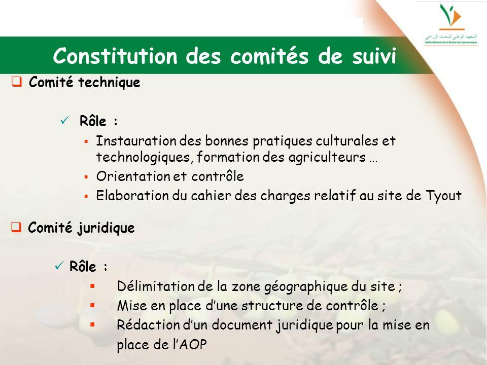 Constitution des comités de suivi