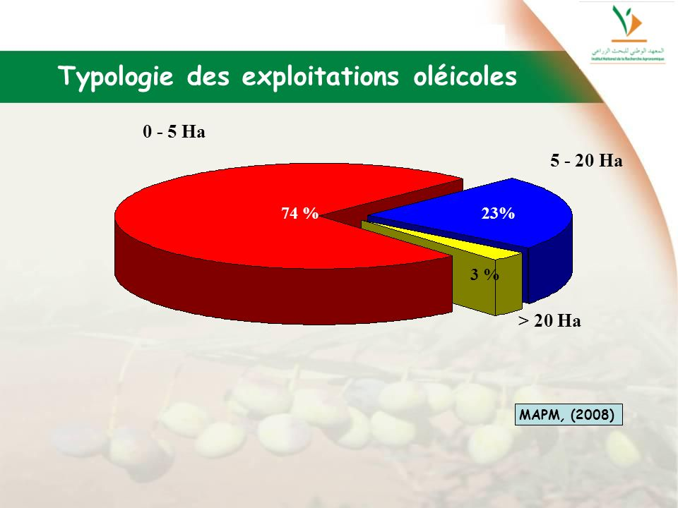 Typologie des exploitations oléicoles