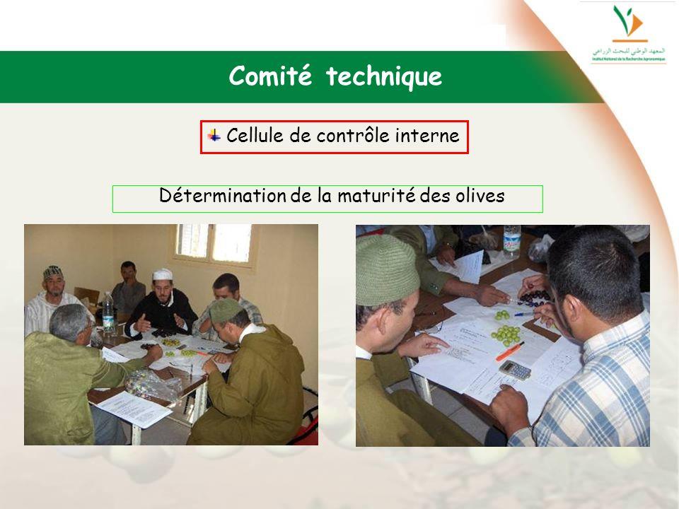 Comité technique Cellule de contrôle interne