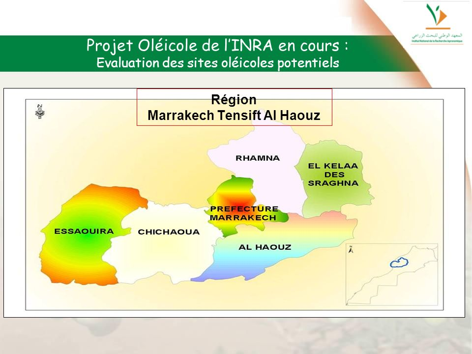 Région Marrakech Tensift Al Haouz